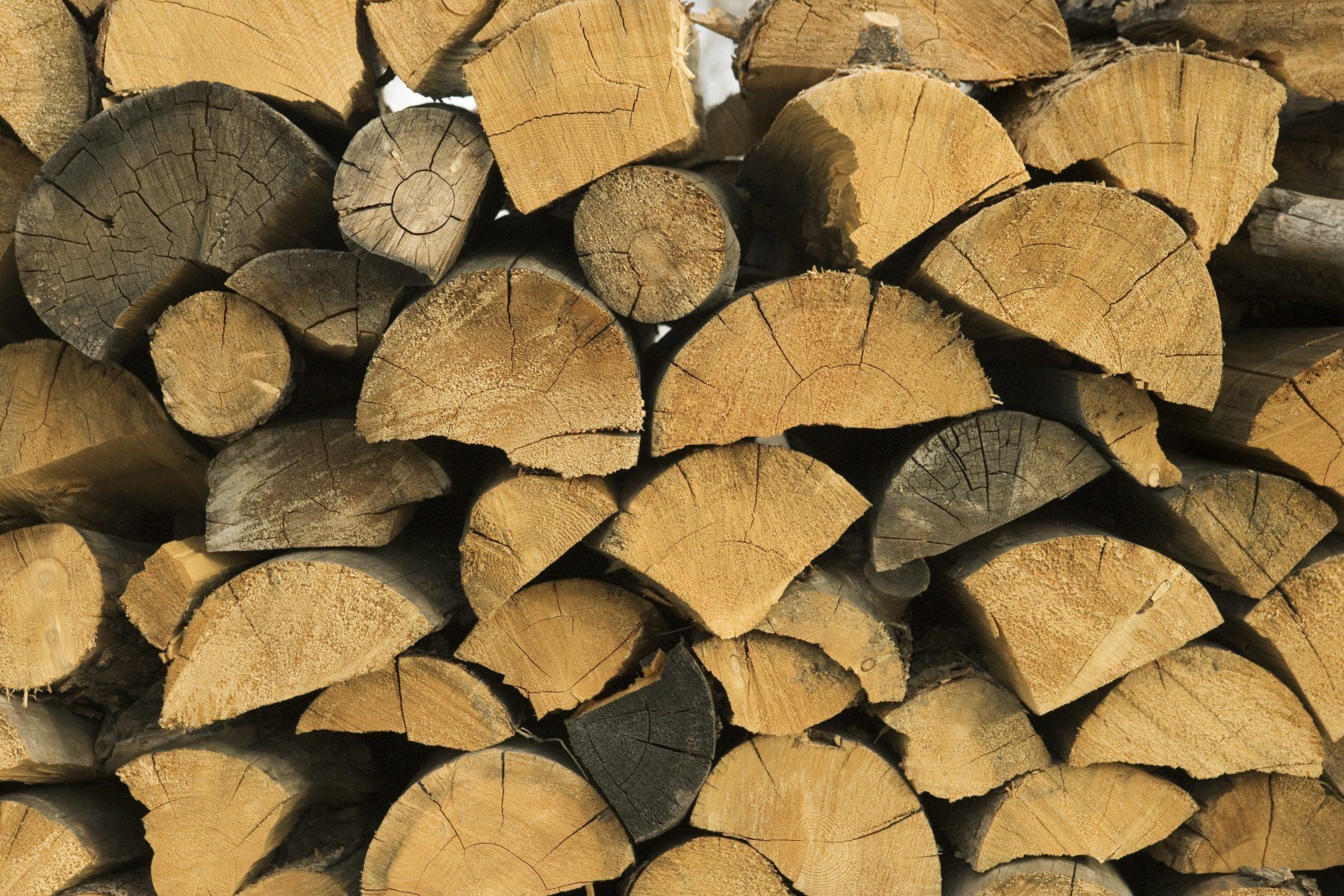 biomasa-fuente-energia-africa