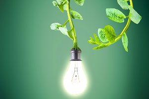 electricidad-verde