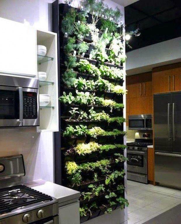 jardines-verticales-interiores-cocina