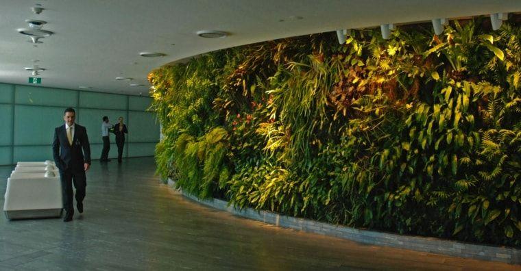 jardines-verticales-interiores-publicos