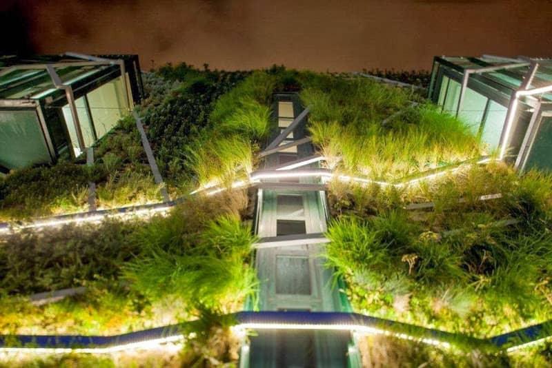 fachada-verde-edificio