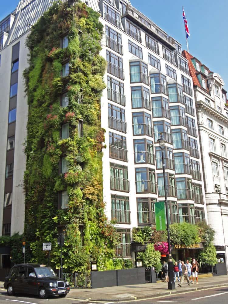 fachada-verde-hotel