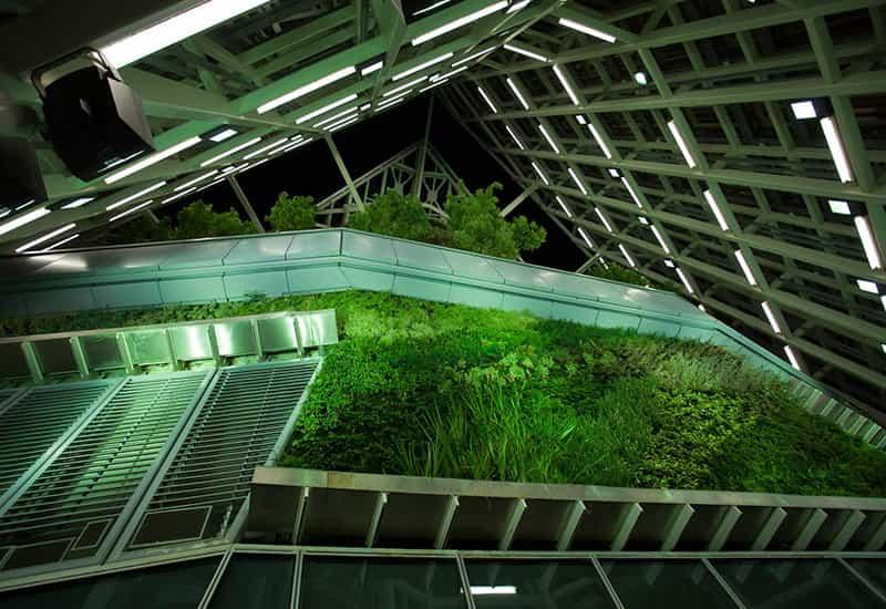 jardines-verticales-altos-mundo-madrid-torre-cristal