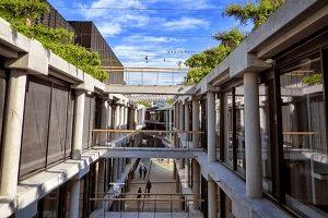proyectos-arquitectura-sustentable