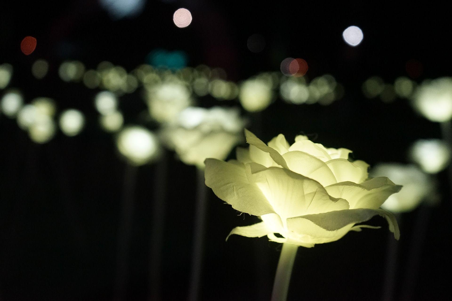 ventajas-iluminacion-sencillas-led