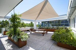 crear-sombra-jardines-terrazas