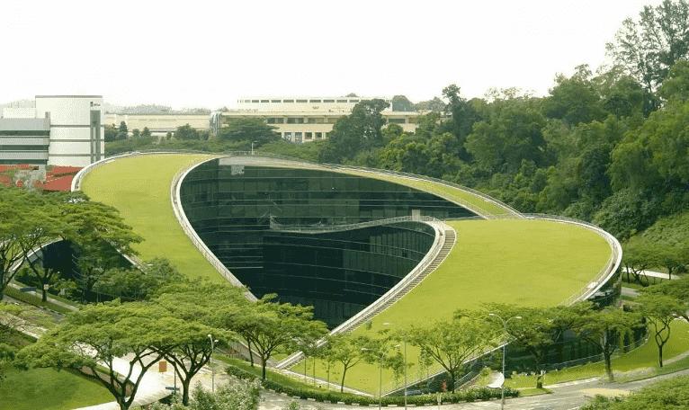 cubierta-verde-singapur
