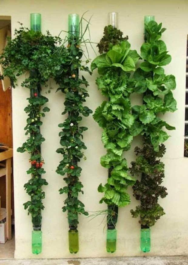jardin-vertical-tubos