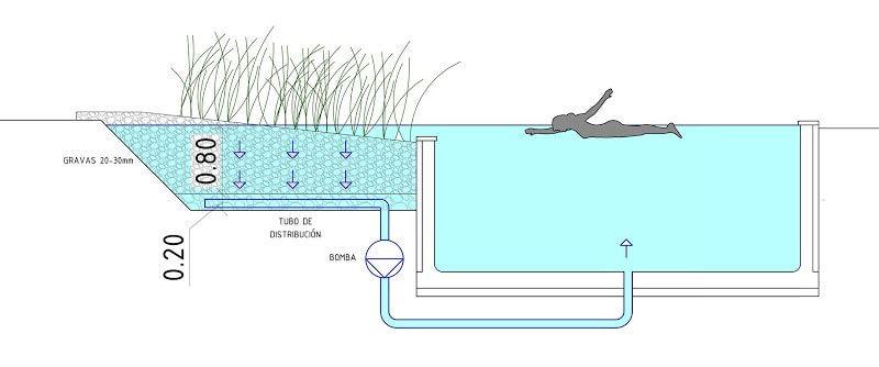 piscinas-naturales-ecologicas-reticulacion