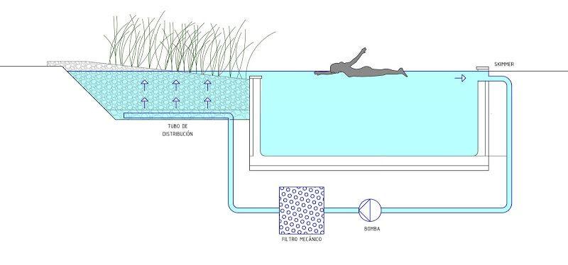piscinas-naturales-ecologicas-skimmer