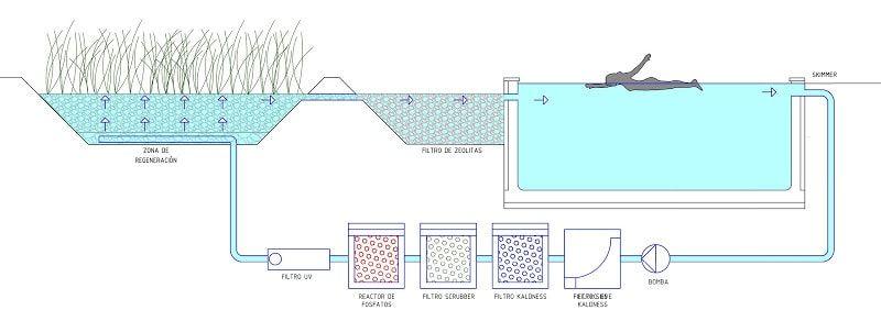 piscinas-naturales-ecologicas-tecnificada