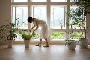 claves-crear-hogares-sanos