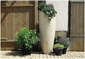plantas-maceta-sistema-ahorrar-agua