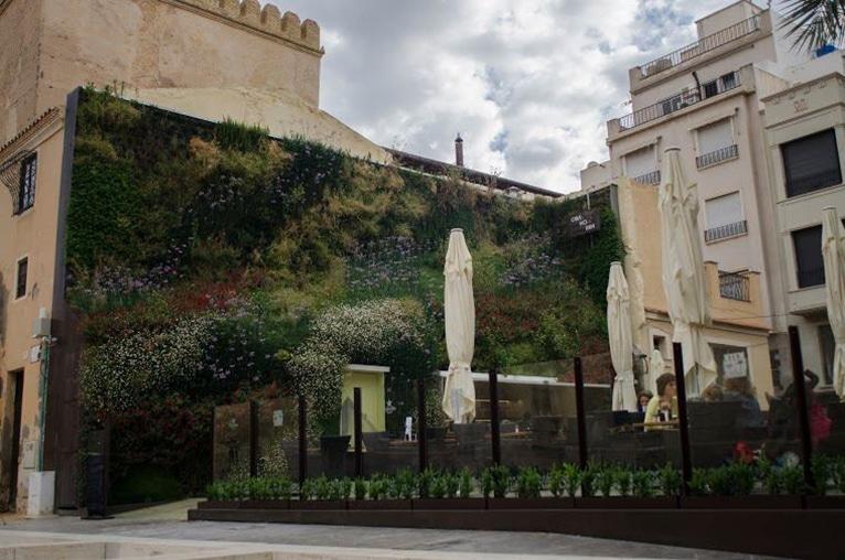 jardin-urbano-vertical