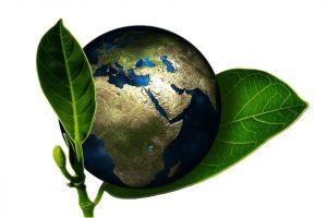 imagen-sostenibilidad