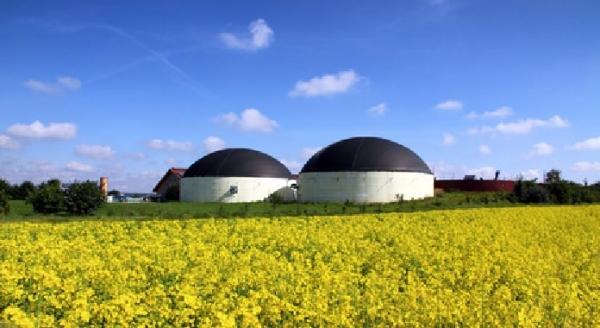 biogas-cupulas