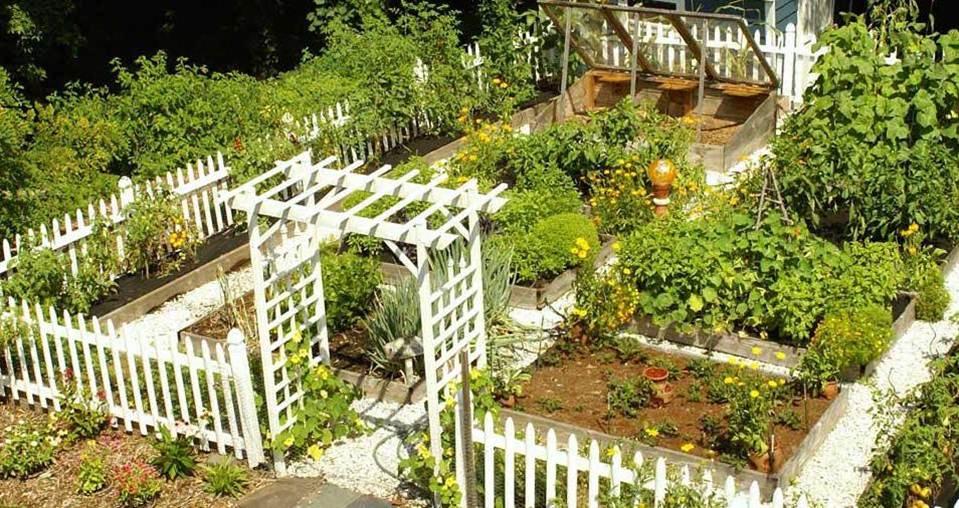 ideas-jardin-huerto
