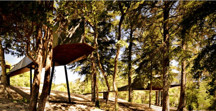 Casa-prefabricada-madera-arboles