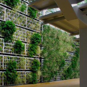 fachadas-vegetales-sistemas-constructivos
