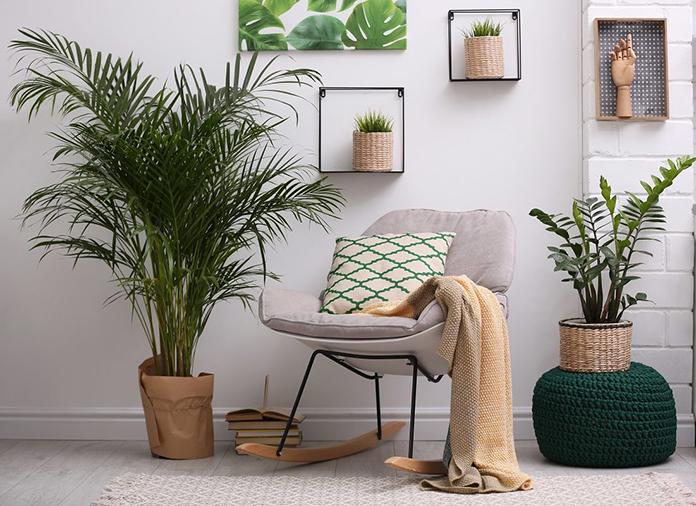 ideas-decorar-casa-con-plantas-interior