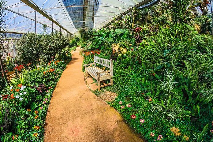 proteger-cultivo-ecologico