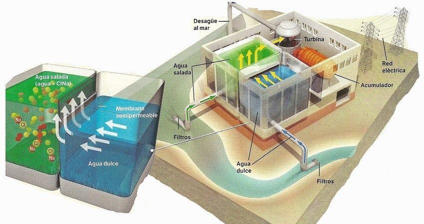 grafico-energia-osmotica