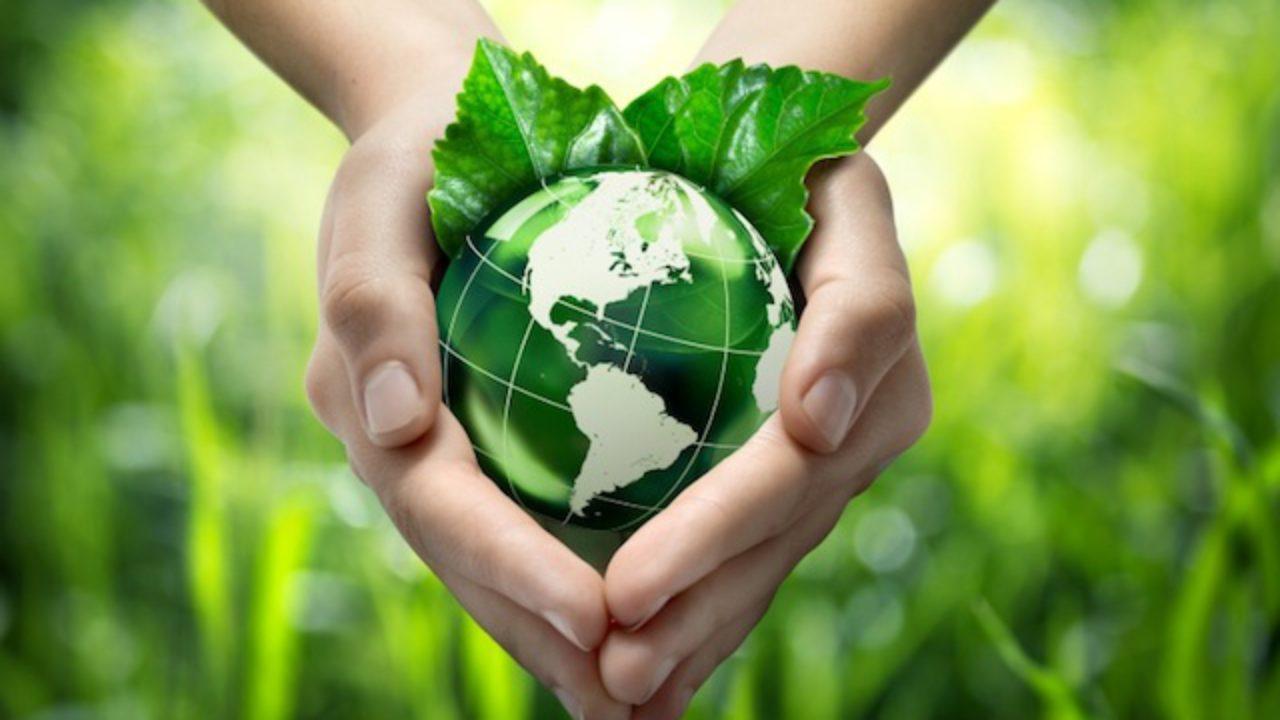 mundo-ecológico