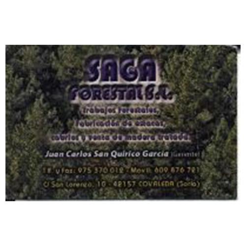 Saga Forestal