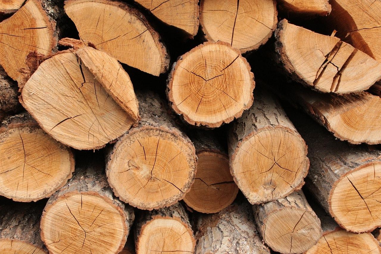 troncos-madera-construccion sostenible