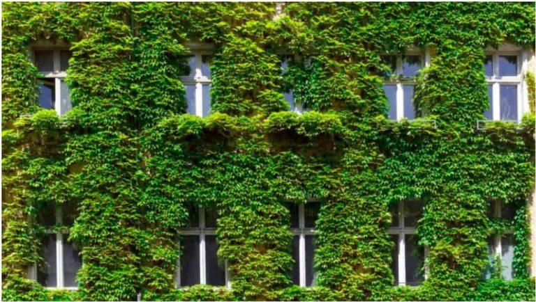 fachada-ventanas-construccion-sostenible