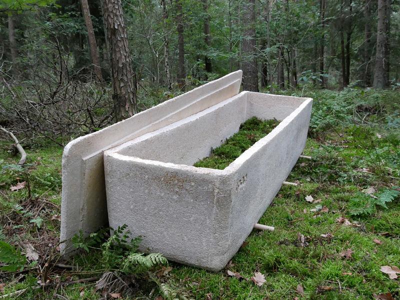 ataud-biodegradable-micelio