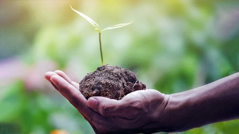 conservacion-recursos-naturales-eficiencia-energetica