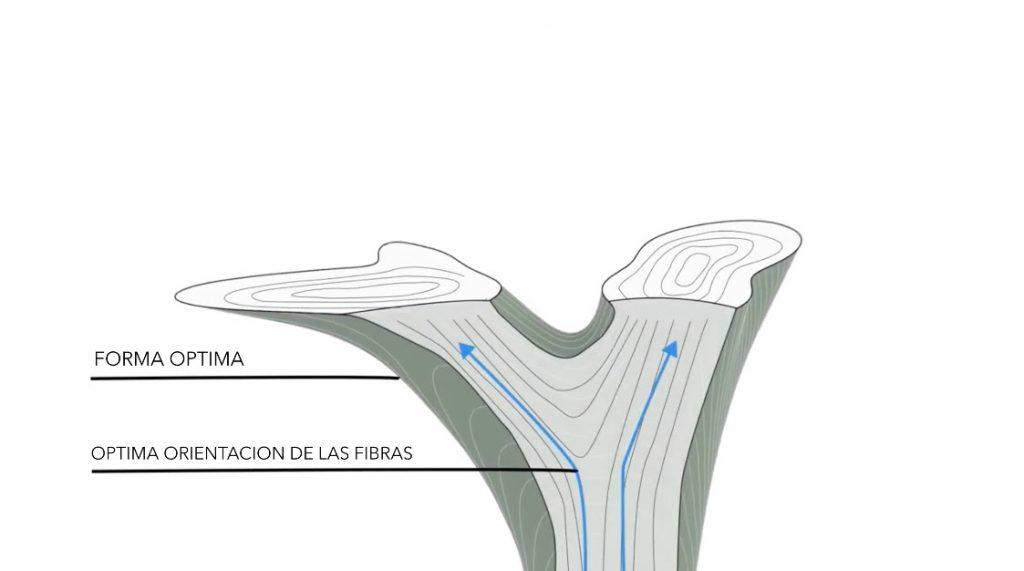 woodflow-orientacion-fibras