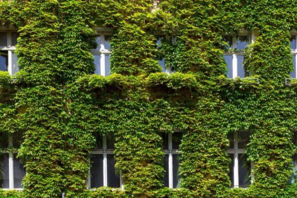 Fachada y ventanas de una construcción sostenible