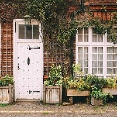 beneficios-plantas-casa